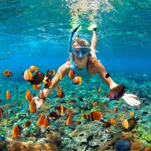 Snorkeling package of Goa
