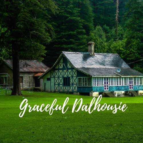 Graceful Dalhousie