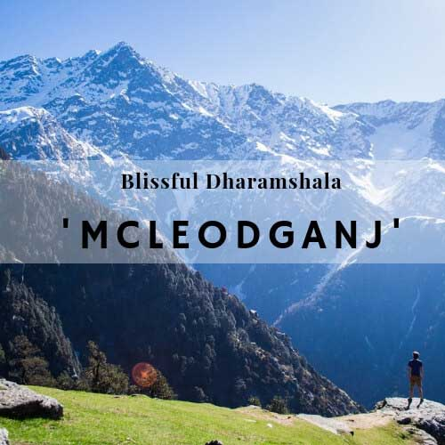 Blissful Dharamshala