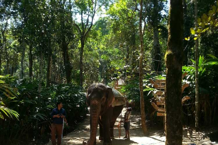 Day 3 Thekkady : Arrival and a memorable day